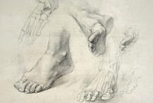 Anatomy / Feet