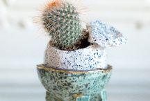 1ère EDITION / UNIQUE & PIC @ JOYCE GALLERY / Du 1er au 10 Septembre 2016, exposition et vente éphèmère de cactus, succulentes et céramique par UNIQUE & PIC chez Joyce Gallery, en présence des artistes invités Emile Degorce-Dumas et Marion Bordeyne.