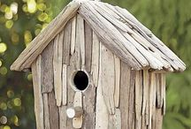 Bird houses  / by Thea Rossouw