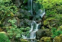 Japan trädgård