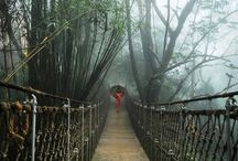 A Premium Escape into Nature by KeralaToursGlobal: 4 Days Holidays