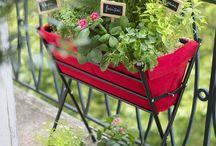 Inspiration Jardinage