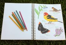 Nature Journaling Class / by Melissa Furnell