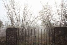 portail et portillons