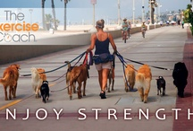 The Exercise Coach Blog