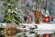 White Winter / by Stephanie Teel