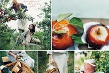 Fruit en kruiden