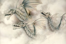 Dragons / by Chuck Lewis