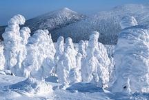 snowmonster/juhyo