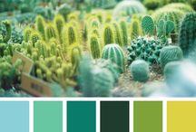 paletas de color