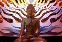 Vipassana / Way of Life.