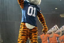 Auburn Life....War Eagle!! / Orange and Blue are my primary colors.....WAR EAGLE / by Kim Foxworth