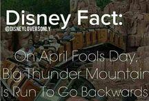 Disney Land Hacks