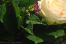 Agenterie d'Antan / Bouquets de fleurs