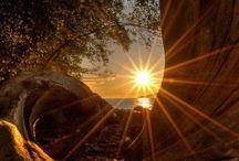 Napfelkelték