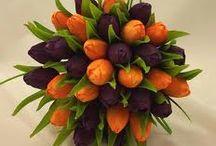 COLOR - Orange & Purple