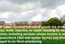 Farm Agricultural Loan Types / Types of Agricultural Loans