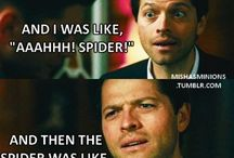 Misha and Mishapocalypse