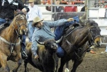 RODEO--Steer Wrestling / by Lynn LaGrone