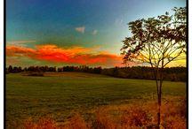 Seasons at the farm / American Masala Farm Hebron, NY
