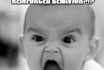 Behaviour seriousness and funnies