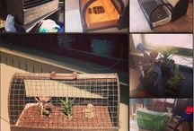 Projects / My Home projects : )