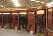 Horses - конюшни