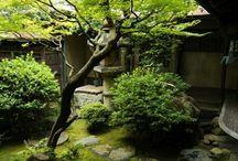 Zahrada brno