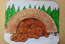 Medve projekt