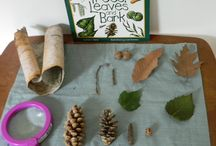 Montessori Nature Table