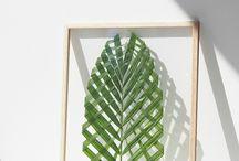 Blade fra træer