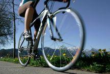 Rennrad Kompetenz im Lindenhof / Das Hotel Lindenhof in Naturns hat sich als Rennrad-Spezialist etabliert und bringt Rennrad-Fans gekonnt auf Touren.