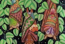 tropic wonderland