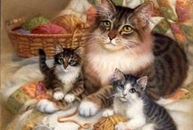 Anne kedi ve yavrulari
