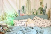Kaktusz szoba/Cactus room