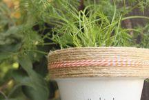 Herb sayings