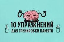 память, внимание