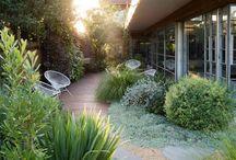 8. Front garden