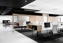 office / by yanan cao