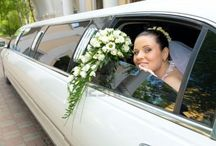 Wedding Limo Picture Ideas