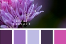 color combo inspiration / by Ariel Brook