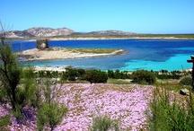 Beaches in Sardinia - Il Melo Residence Sardinia