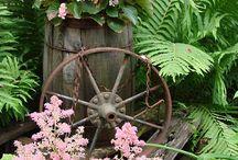 My shade garden / by Linda Wilds