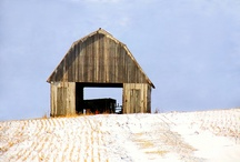 Country Barns and Back Roads / by Cindy Dunn