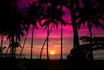 Sunsets / by Gale Knight