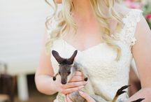 My Photography / Wedding, Portrait, Engagement, Family Photography by Angela Higgins www.angelahiggins.com