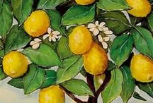 When Life Gives You Lemons / by Vered Gabay