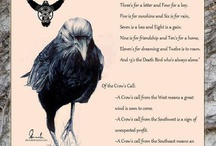 A conspiracy of ravens, a murder of crows / Family Corvidae