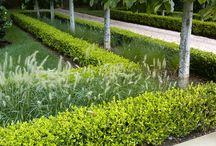 FORMAL GARDENS / by Xochicali Vivero