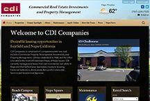 Website Advice / Web Design and Structure Advice